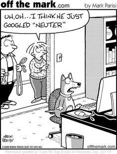 HAHD_Google_Neuter