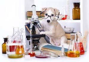 treatibles-dog-scientist-1462314601